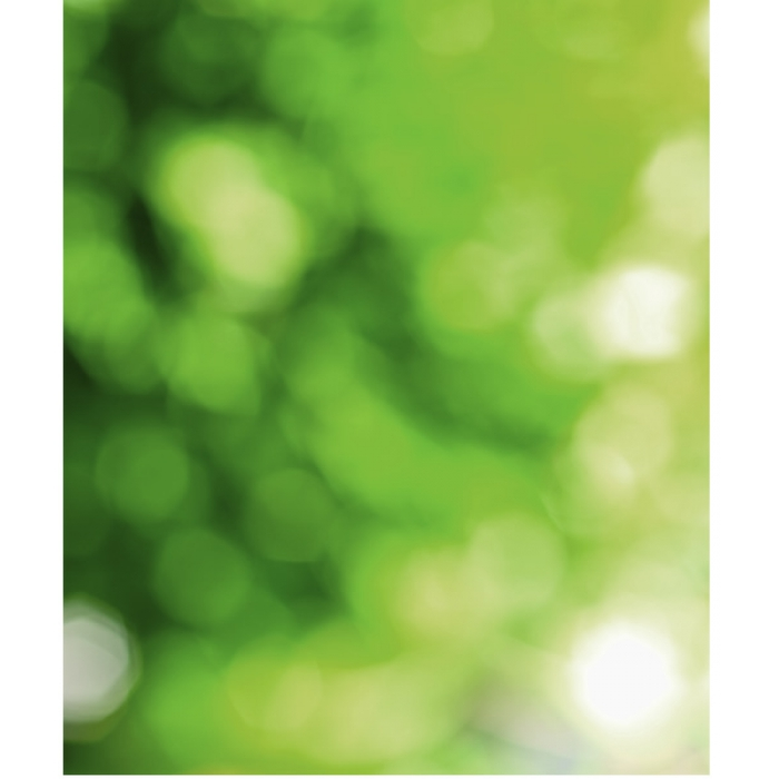 Photo Backdrop Green Bokah - 75cm x 90cm